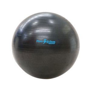 Physio and Wellness Anti Burst Ball